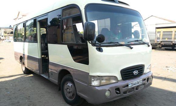 Voiture à vendre Hyundai County Beige - Kinshasa - Kasa Vubu