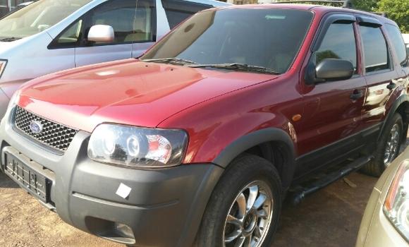Voiture à vendre Ford Escape Rouge - Lubumbashi - Lubumbashi