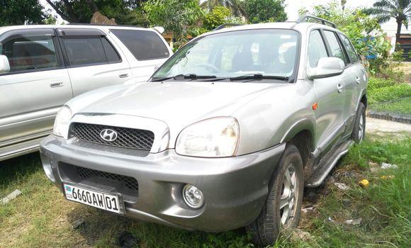 Voiture à vendre Hyundai Santa Fe Gris - Kinshasa - Limete