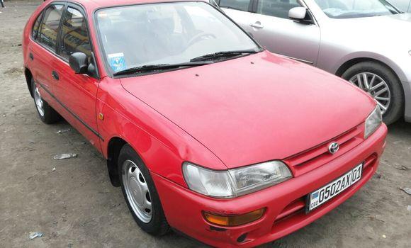 Voiture à vendre Toyota Corolla Rouge - Kinshasa - Kasa Vubu