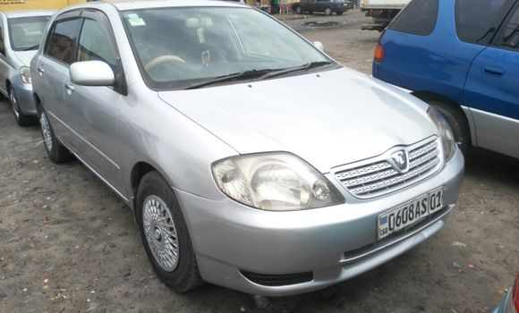 Voiture à vendre Toyota Allex Gris - Kinshasa - Kasa Vubu