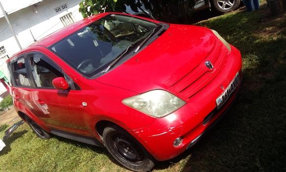 Voiture à vendre Toyota IST Rouge - Kinshasa - Ngaliema